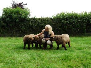 Me and my coloured ryeland sheep